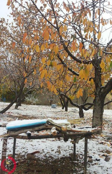 برف پاییزی در یاسوج